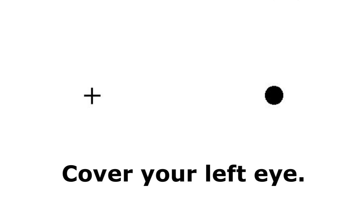 Blind Spot Test